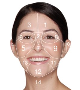 dermalogica_face_mapping